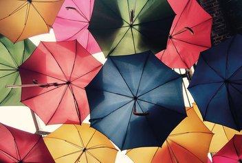 De nombreux parapluies ouverts vue du bas.