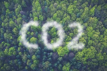 """Top view of a forest with a cloud of pollution forming in letters """"CO2""""."""