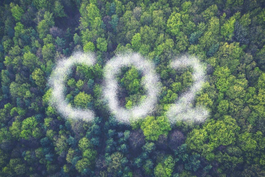 """Vue de haut d'une forêt avec un un nuage de pollution qui forme en lettres """"CO2""""."""