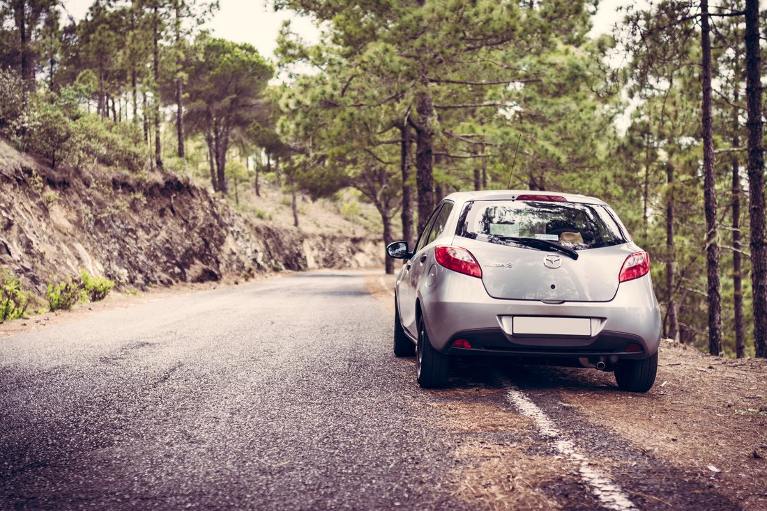 Une voiture est stationnée le long d'une route dans la forêt.